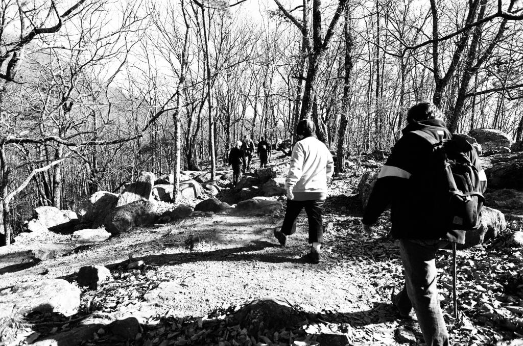 The Nikon FG - a light SLR for mountain hikes
