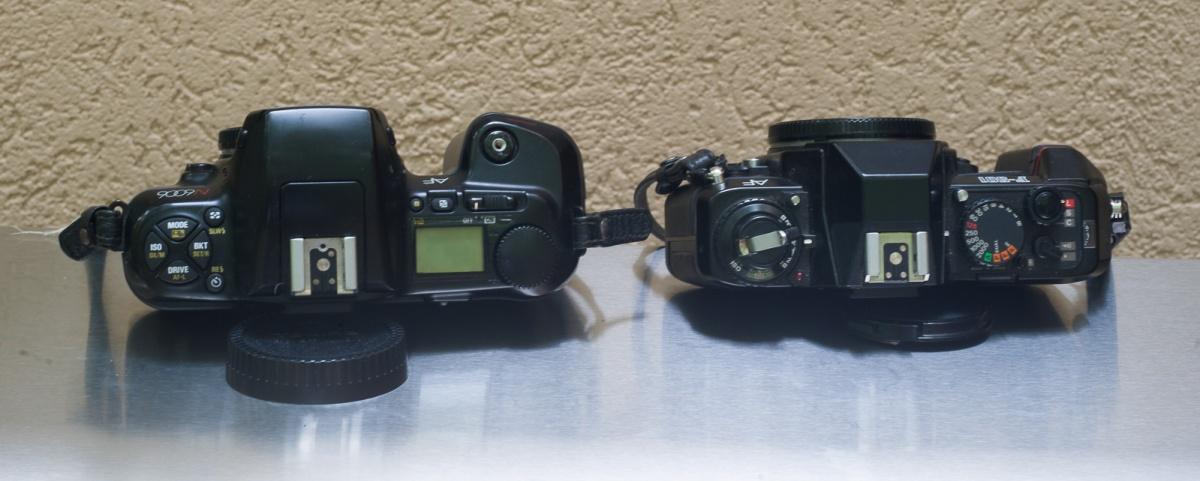 NikonF501-6362