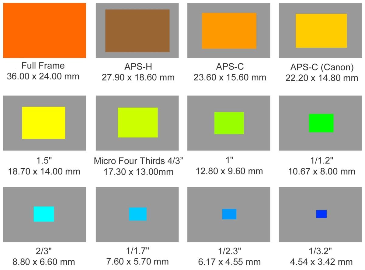 Relative Size of Image Sensors