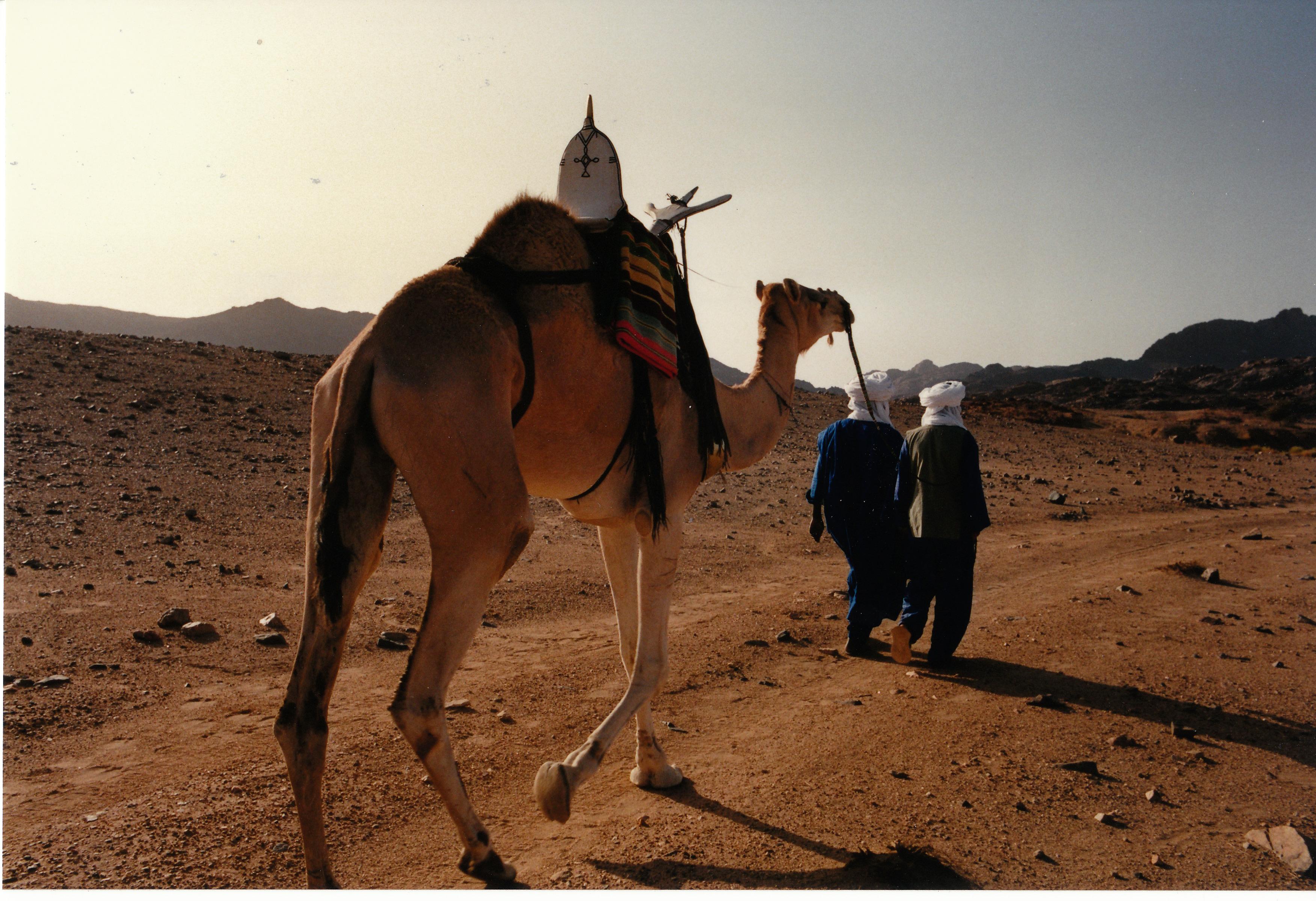 sahara_Nov_1991